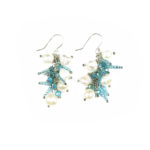 Blue Moon 4-in-1 Earrings One 962b